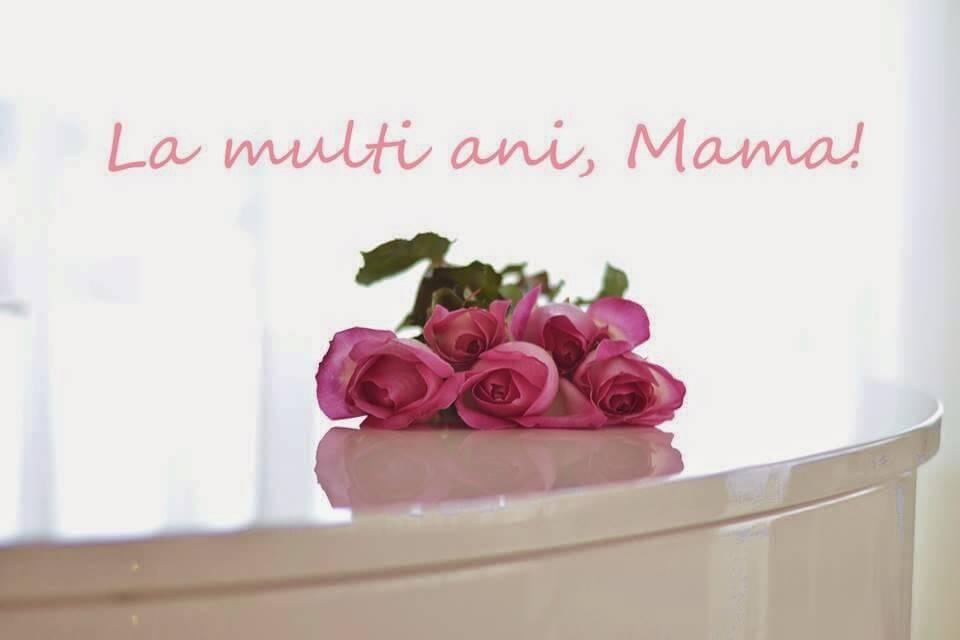 multi-ani-mama